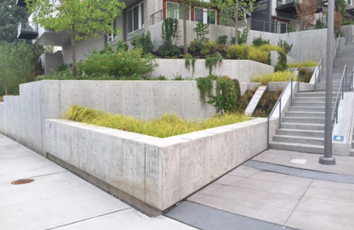 Concrete paving, ADA ramps, stairs, exterior flat work, curb and gutter, topping slabs